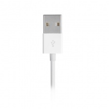 Lightning to USB Data Cable